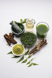 Ayurvedic neem产品喜欢浆糊,粉末,油,汁液,牙关心 图库摄影