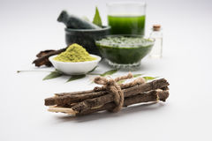 Ayurvedic neem producten zoals deeg, poeder, olie, sap, tandzorg royalty-vrije stock foto's