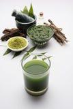 Ayurvedic neem producten zoals deeg, poeder, olie, sap, tandzorg royalty-vrije stock foto