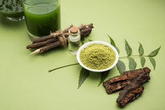Ayurvedic neem products like paste, powder, oil, juice, tooth care. Medicinal Ayurvedic Azadirachta indica or Neem leaves in mortar and pestle with neem paste Stock Image