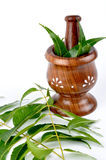 Ayurvedic prepration Stock Photography