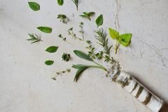 Ayurvedic ziołowa sól w szklanym słoju Morze sól z aromatycznym ziele - rozmaryn, oregano, mędrzec, lebiodka, basil, macierzanka, obrazy royalty free