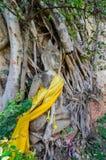 ayuthaya świątynia Thailand Zdjęcia Stock