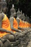 Ayuthaya buddha image Stock Photography