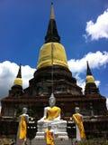 Ayuthaya Buddha Statua Zdjęcia Royalty Free