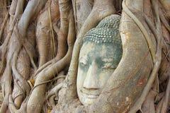 Ayuthaya kingdom history. Ayutthaya kingdom history in Thailand Stock Image