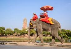 AYUTHAYA TAILÂNDIA 2 DE JANEIRO: equitação do turista no pa da parte traseira do elefante foto de stock