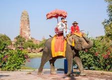 AYUTHAYA TAILANDIA 2 DE ENERO: montar a caballo turístico en el PA de la parte posterior del elefante foto de archivo libre de regalías