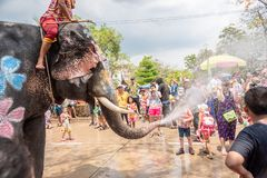 Elephant and peoples are splashing water in Songkran festival stock photography