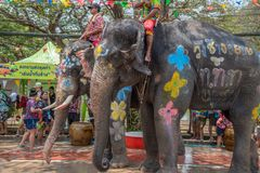 Elephant and peoples are splashing water in Songkran festival royalty free stock images