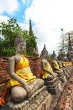 Ayuthaya Thailand - 13 Februari 2014: Rader av den buddha statyn Wat Yai Chaimongkhon, Arkivfoton