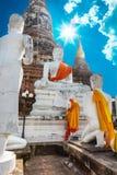 Ayuthaya, Thailand - 13 Februari 2014: Sluit omhoog van Wat Yai Chaimongkhon Stock Afbeeldingen
