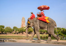 AYUTHAYA THAILAND-JANUARY 2: turist- ridning på elefantbaksidaPA Arkivfoto
