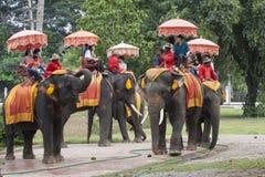 AYUTHAYA THAILAND - NOVEMBER 6 : asian tourist on elephant back Stock Image