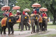 AYUTHAYA 6 THAILAND-SEPTEMBER: toerist die op olifantsrug berijden Stock Afbeeldingen