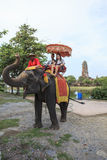 AYUTHAYA THAILAND-SEPTEMBER 6 : tourist riding on elephant back Stock Photo