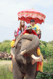 AYUTHAYA THAILAND-SEPTEMBER 6 : tourist riding on elephant back Stock Photos