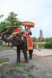 AYUTHAYA THAILAND-SEPTEMBER 6 : tourist riding on elephant back Stock Images