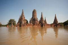 ayuttaya затопляет mega висок Таиланд Стоковое Изображение RF