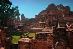 Ayuttaya Historisch Park, Thailand stock foto's
