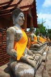 ayuttaya thai buddha Royaltyfri Foto