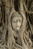 Ayuttaya Thailand Lizenzfreies Stockbild
