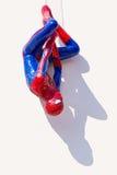 Ayuttaya, Thailand - November 15, 2015 : Spider-Man model upside Royalty Free Stock Photos