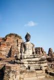 ayutthaya菩萨雕象泰国 免版税图库摄影