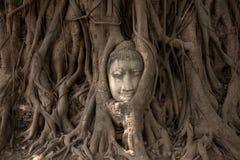 ayutthaya菩萨 免版税库存照片