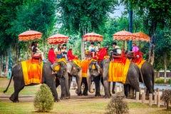 游人获得与乘驾的乐趣在大象 免版税库存照片