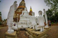 AYUTTHAYA, ΤΑΪΛΑΝΔΗ, 08 ΦΕΒΡΟΥΑΡΙΟΥ, 2018: Υπαίθρια άποψη του ιστορικού πάρκου Sukhothai η παλαιά πόλη της Ταϊλάνδης αρχαία Στοκ φωτογραφία με δικαίωμα ελεύθερης χρήσης