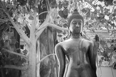 Ayutthaya, Ταϊλάνδης - 11 Μαρτίου, 2017: Μαύρο άγαλμα του Βούδα στο W Στοκ φωτογραφία με δικαίωμα ελεύθερης χρήσης