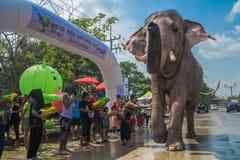AYUTTHAYA, ТАИЛАНД - 14-ОЕ АПРЕЛЯ: Гуляки наслаждаются водой брызгая с слонами во время фестиваля Songkran 14-ого апреля 2016 в A Стоковые Изображения