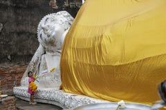 Ayutthaya stock afbeelding