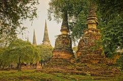 Ayutthaya Royalty-vrije Stock Foto's