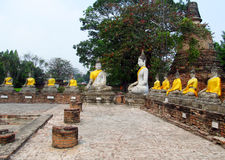Ayutthaya ancient city ruins in Thailand, Buddha statues stock image
