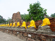 Ayutthaya ancient city ruins in Thailand, Buddha statues Royalty Free Stock Photo