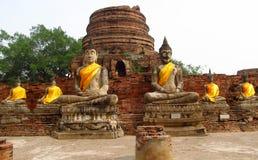 Ayutthaya ancient city ruins in Thailand, Buddha statues royalty free stock photo