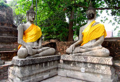 Ayutthaya ancient city ruins in Thailand, Buddha statues Royalty Free Stock Photos
