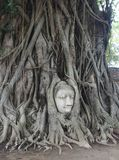 Ayutthaya-Besuch Thailandia Lizenzfreies Stockbild