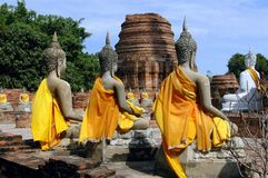ayutthaya buddas寺庙泰国 图库摄影