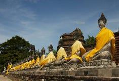 ayutthaya buddha thailand Arkivfoto