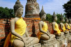 ayutthaya buddhas供以座位泰国 免版税库存图片
