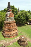 Ayutthaya Chedi Royalty Free Stock Photo