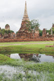 Ayutthaya-Erbpark Stockbilder