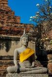 Ayutthaya forntida Buddhastaty fotografering för bildbyråer
