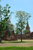 Ayutthaya Historical Park Thailand. A UNESCO World Heritage Site, Ayutthaya's historic temples are scattered throughout this once magnificent city and along the Royalty Free Stock Photography