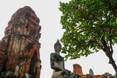 Ayutthaya landskap, Thailand på Augusti 21,2018: Den forntida Buddhastatyn, En khmer-stil prangs och fördärvar på Wat Mahathat, P Royaltyfria Foton