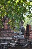 Ayutthaya Park4 histórico Imagens de Stock