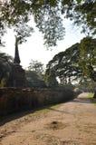 Ayutthaya Park3 histórico Imagem de Stock